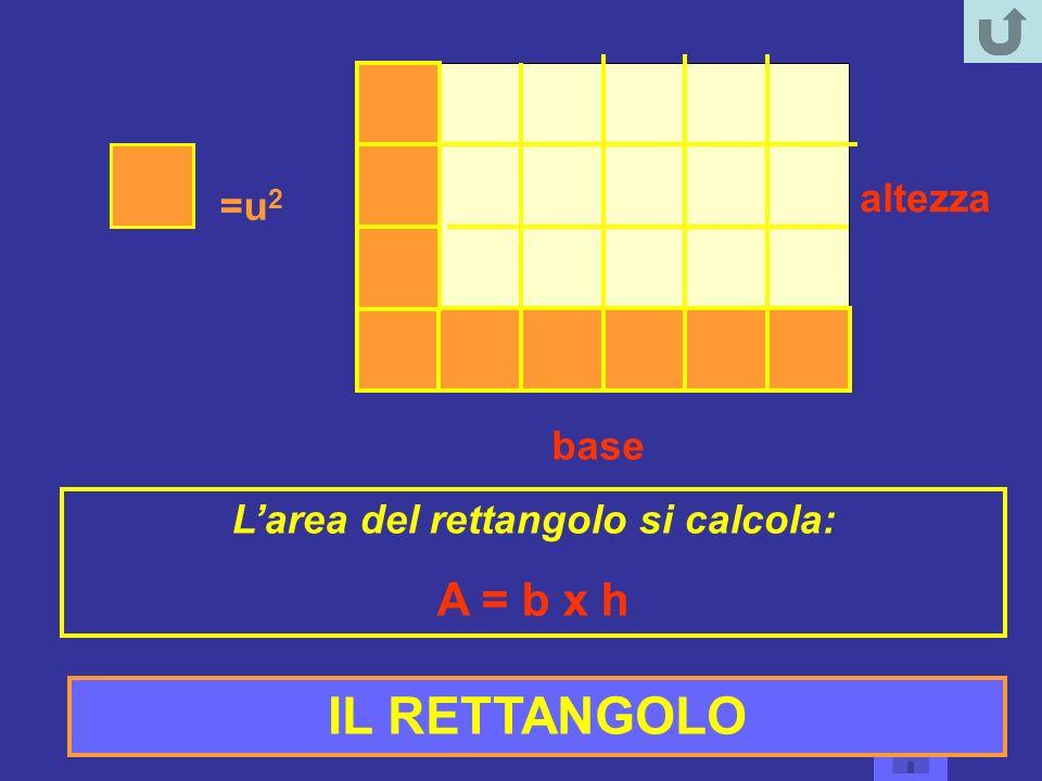 =u 2 base altezza Larea del rettangolo si calcola: A = b x h IL RETTANGOLO