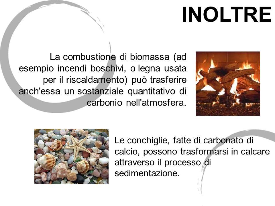 La combustione di biomassa (ad esempio incendi boschivi, o legna usata per il riscaldamento) può trasferire anch'essa un sostanziale quantitativo di c