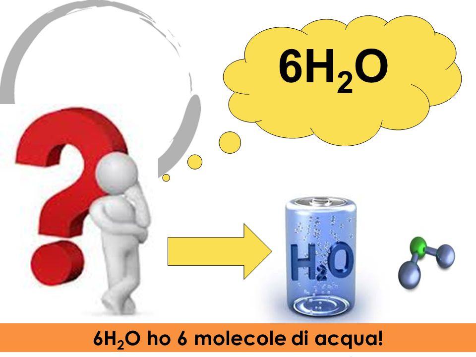 6H 2 O 6H 2 O ho 6 molecole di acqua!