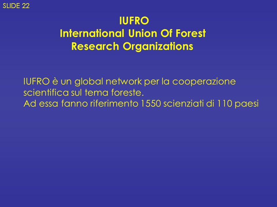 IUFRO International Union Of Forest Research Organizations SLIDE 22 IUFRO è un global network per la cooperazione scientifica sul tema foreste. Ad ess