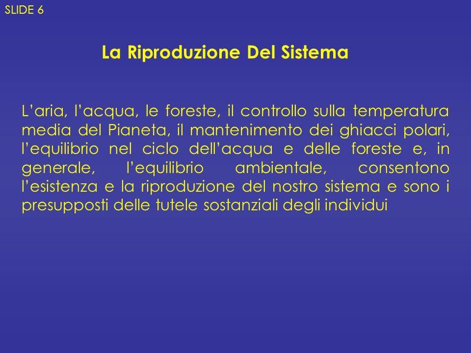 La Riproduzione Del Sistema Laria, lacqua, le foreste, il controllo sulla temperatura media del Pianeta, il mantenimento dei ghiacci polari, lequilibrio nel ciclo dellacqua e delle foreste e, in generale, lequilibrio ambientale, consentono lesistenza e la riproduzione del nostro sistema e sono i presupposti delle tutele sostanziali degli individui SLIDE 6
