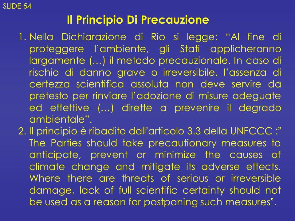 1.Nella Dichiarazione di Rio si legge: Al fine di proteggere lambiente, gli Stati applicheranno largamente (…) il metodo precauzionale.