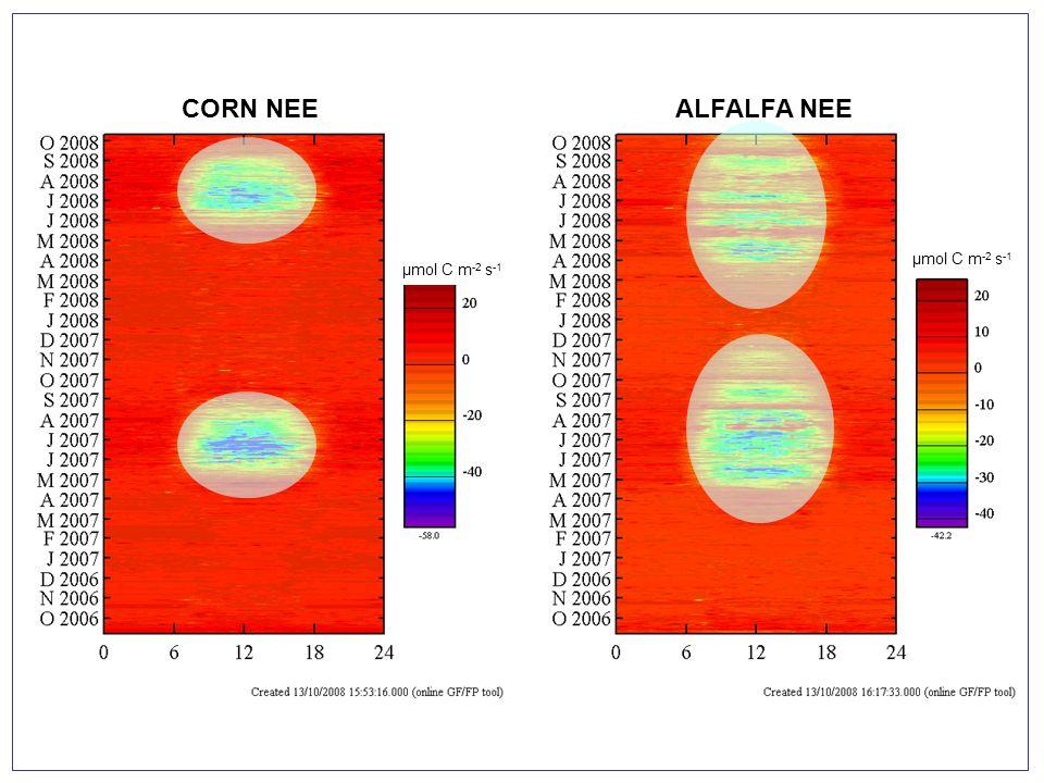 CORN ALFALFA Confronto tra dati eddy + camerette e analisi di crescita