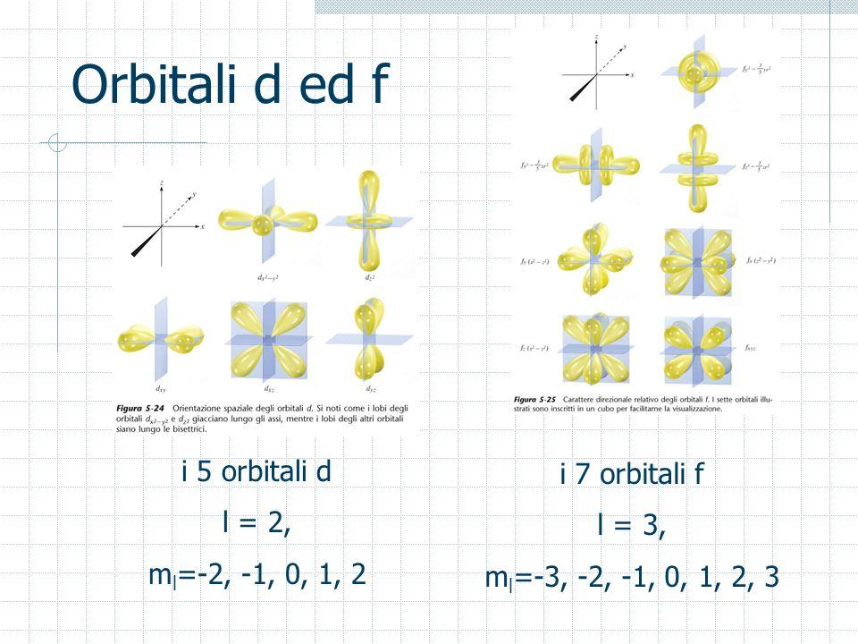Orbitali d ed f i 5 orbitali d l = 2, m l =-2, -1, 0, 1, 2 i 7 orbitali f l = 3, m l =-3, -2, -1, 0, 1, 2, 3