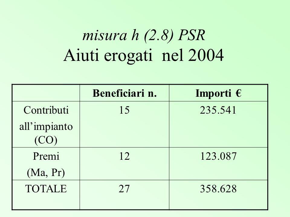 misura h (2.8) PSR Aiuti erogati nel 2004 Beneficiari n.Importi Contributi allimpianto (CO) 15235.541 Premi (Ma, Pr) 12123.087 TOTALE27358.628