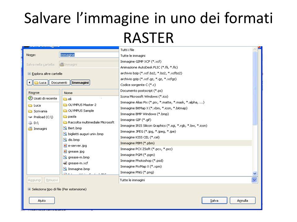 Salvare limmagine in uno dei formati RASTER