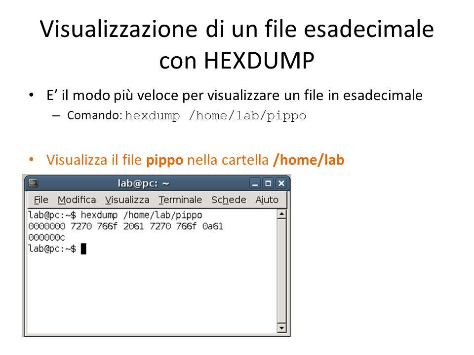 Visualizzazione di un file esadecimale con HEXDUMP E il modo più veloce per visualizzare un file in esadecimale – Comando: hexdump /home/lab/pippo Vis