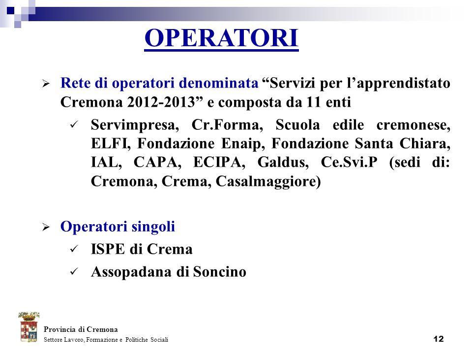 12 Rete di operatori denominata Servizi per lapprendistato Cremona 2012-2013 e composta da 11 enti Servimpresa, Cr.Forma, Scuola edile cremonese, ELFI