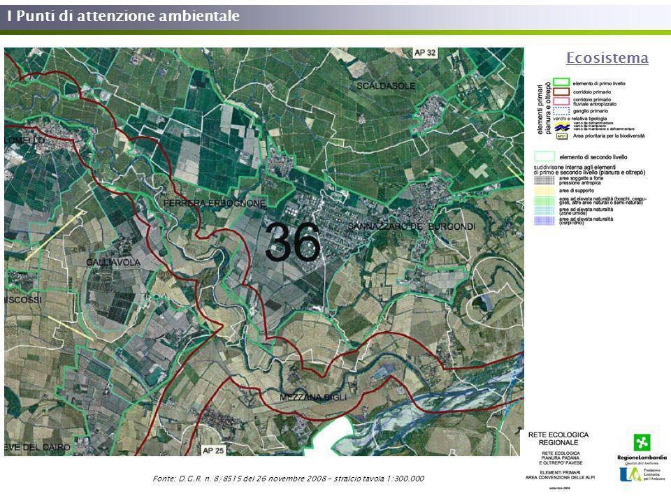 I Punti di attenzione ambientale Ecosistema Fonte: D.G.R. n. 8/8515 del 26 novembre 2008 – stralcio tavola 1:300.000