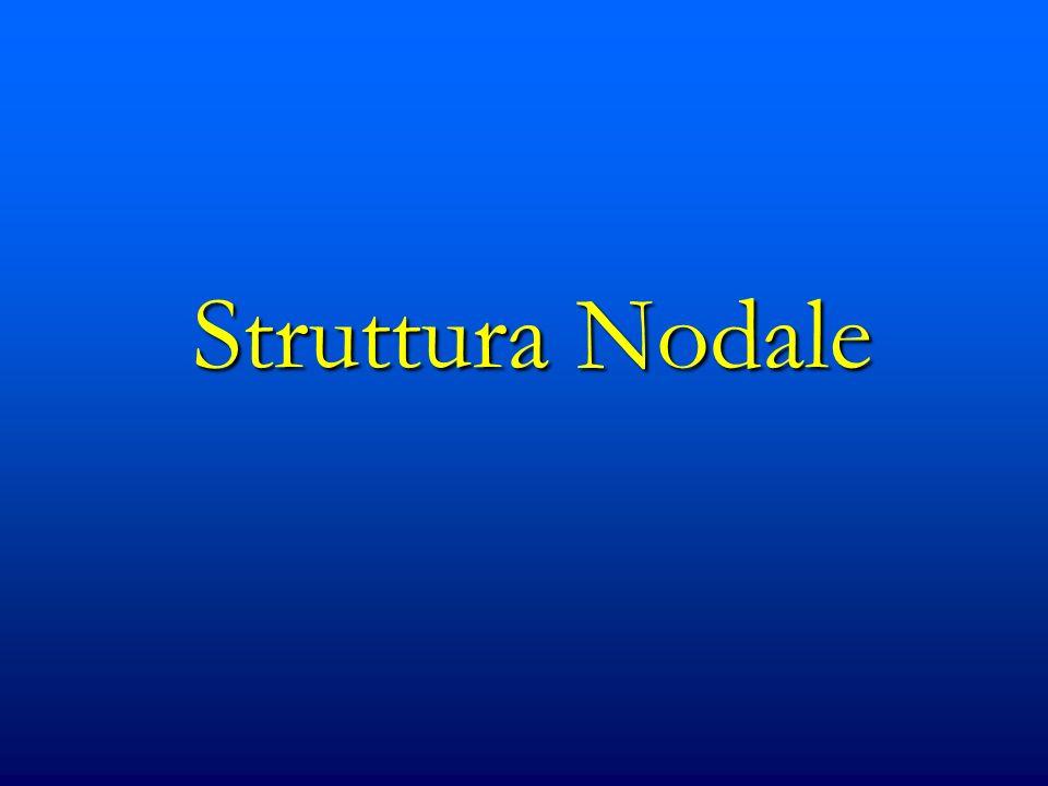 Struttura Nodale