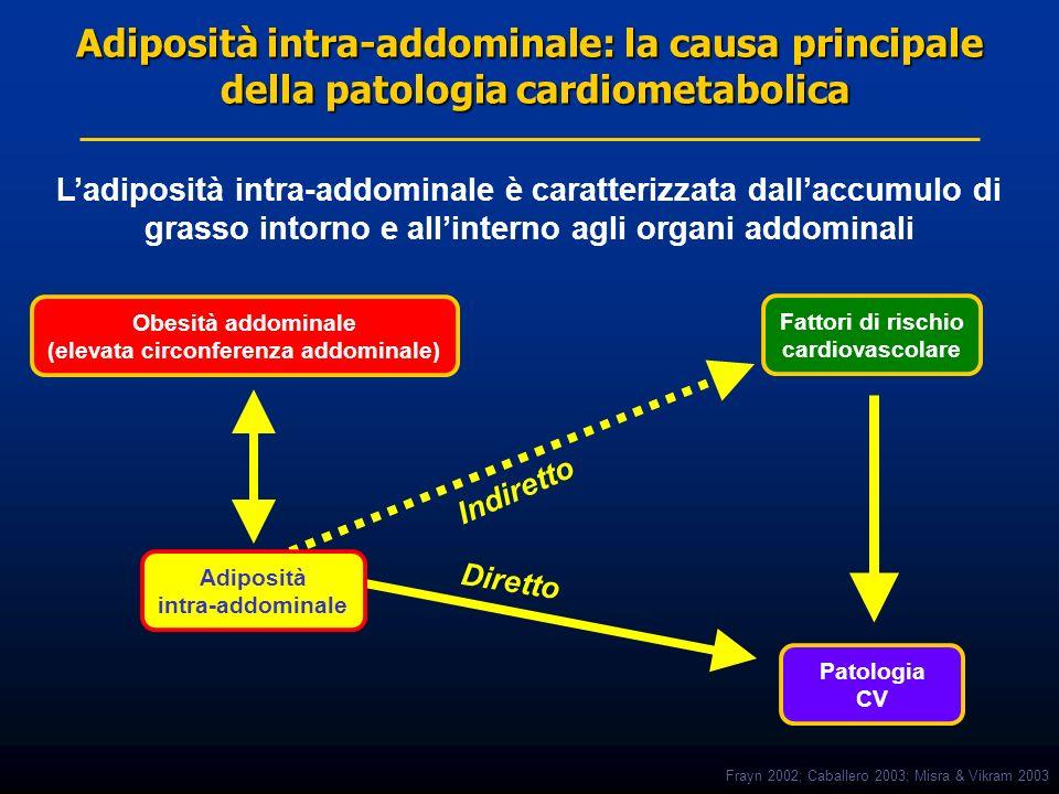 Adiposità intra-addominale: la causa principale della patologia cardiometabolica Adiposità intra-addominale Patologia CV Fattori di rischio cardiovasc