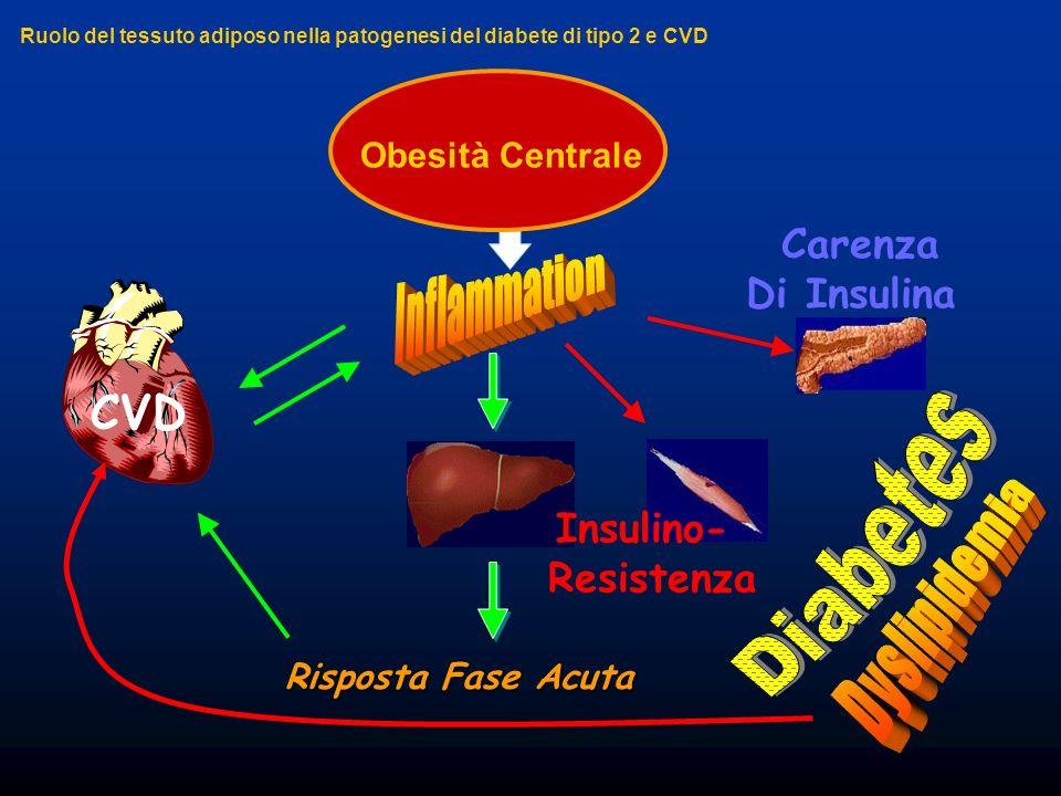 Obesità Centrale CVD Insulino- Resistenza Carenza Di Insulina Risposta Fase Acuta Ruolo del tessuto adiposo nella patogenesi del diabete di tipo 2 e C