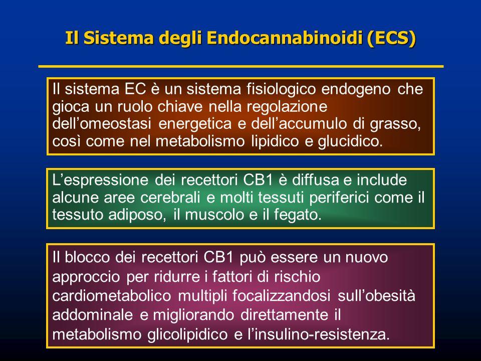 Il Sistema degli Endocannabinoidi (ECS) Il sistema EC è un sistema fisiologico endogeno che gioca un ruolo chiave nella regolazione dellomeostasi ener