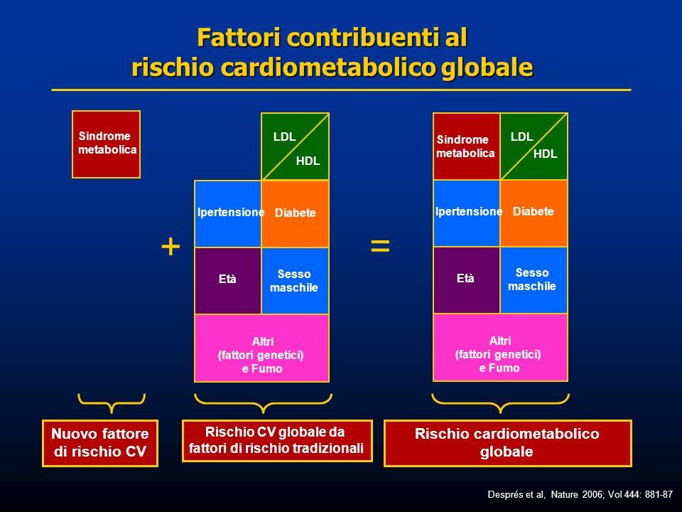 RISCHIO CARDIOMETABOLICO GLOBALE Iper- tensione Età Sesso maschile Diabete SINDROME METABOLICA Infiam- mazione ApoB LDL dense TG HDL Press.