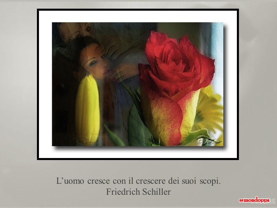 Luomo cresce con il crescere dei suoi scopi. Friedrich Schiller