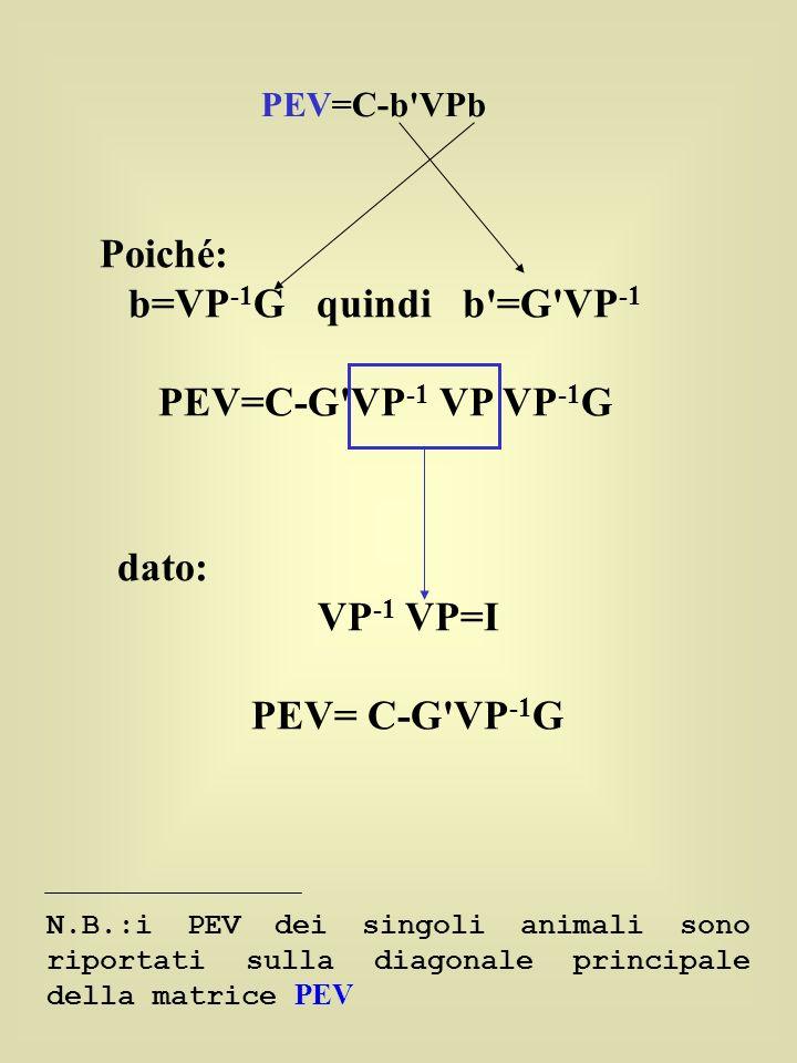 Poiché: b=VP -1 G quindi b =G VP -1 PEV=C-G VP -1 VP VP -1 G dato: VP -1 VP=I PEV= C-G VP -1 G N.B.:i PEV dei singoli animali sono riportati sulla diagonale principale della matrice PEV PEV=C-b VPb