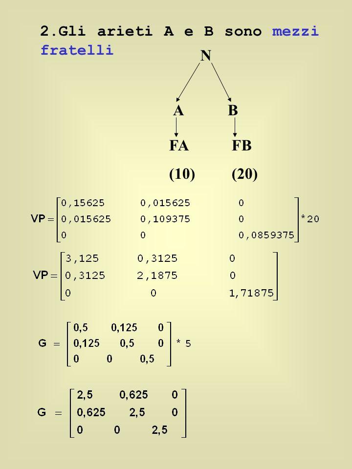 2.Gli arieti A e B sono mezzi fratelli N AB FA (10) FB (20)