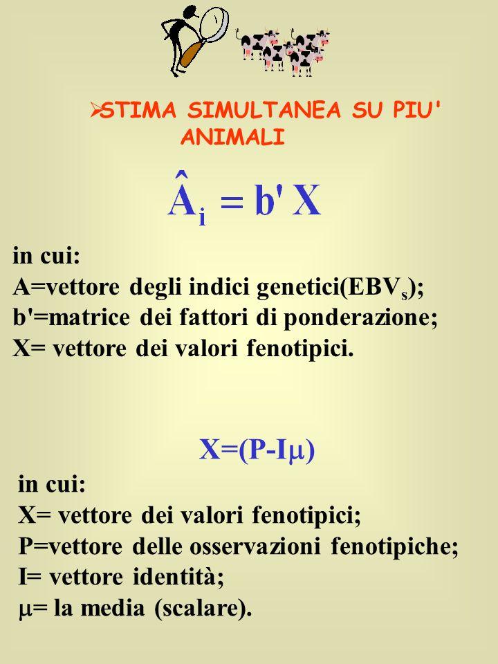 X=(P-I ) in cui: X= vettore dei valori fenotipici; P=vettore delle osservazioni fenotipiche; I= vettore identità; = la media (scalare). STIMA SIMULTAN