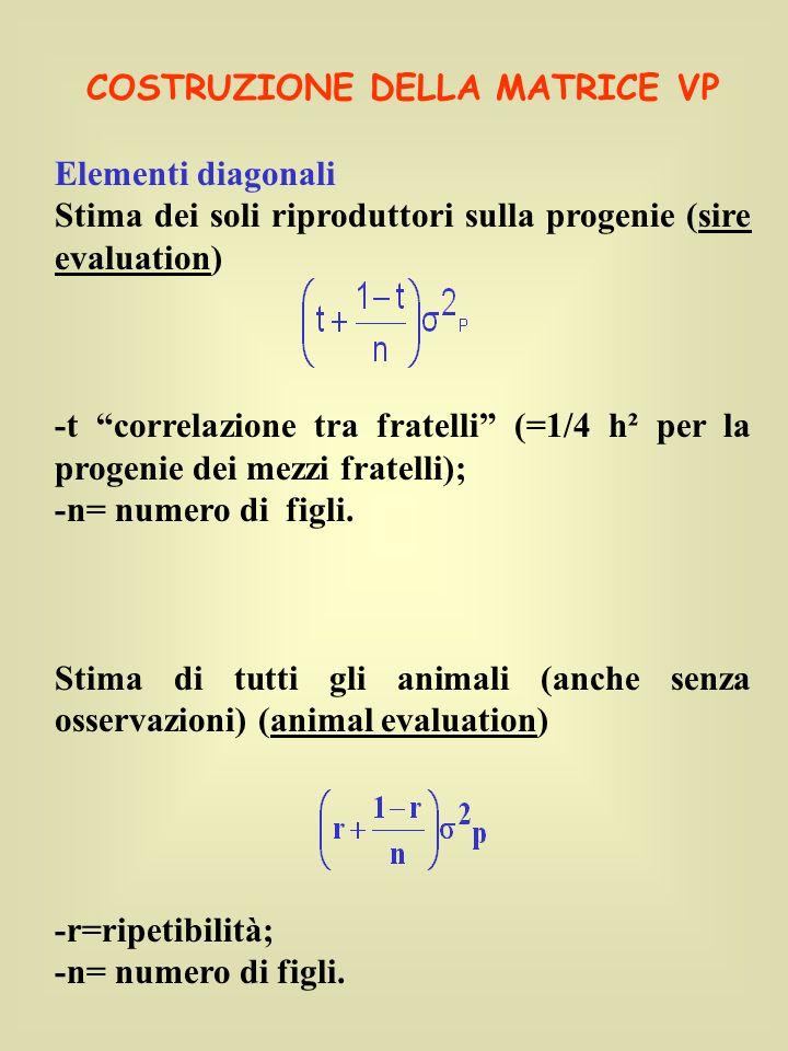 COSTRUZIONE DELLA MATRICE VP Elementi diagonali Stima dei soli riproduttori sulla progenie (sire evaluation) -t correlazione tra fratelli (=1/4 h² per