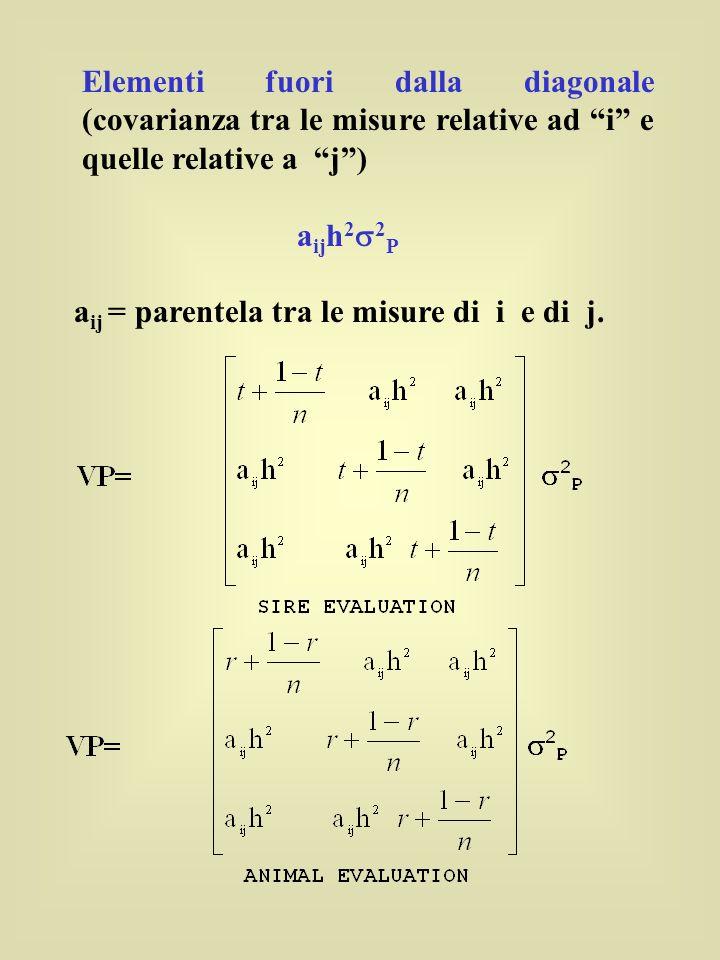 Elementi fuori dalla diagonale (covarianza tra le misure relative ad i e quelle relative a j) a ij h 2 2 P a ij = parentela tra le misure di i e di j.