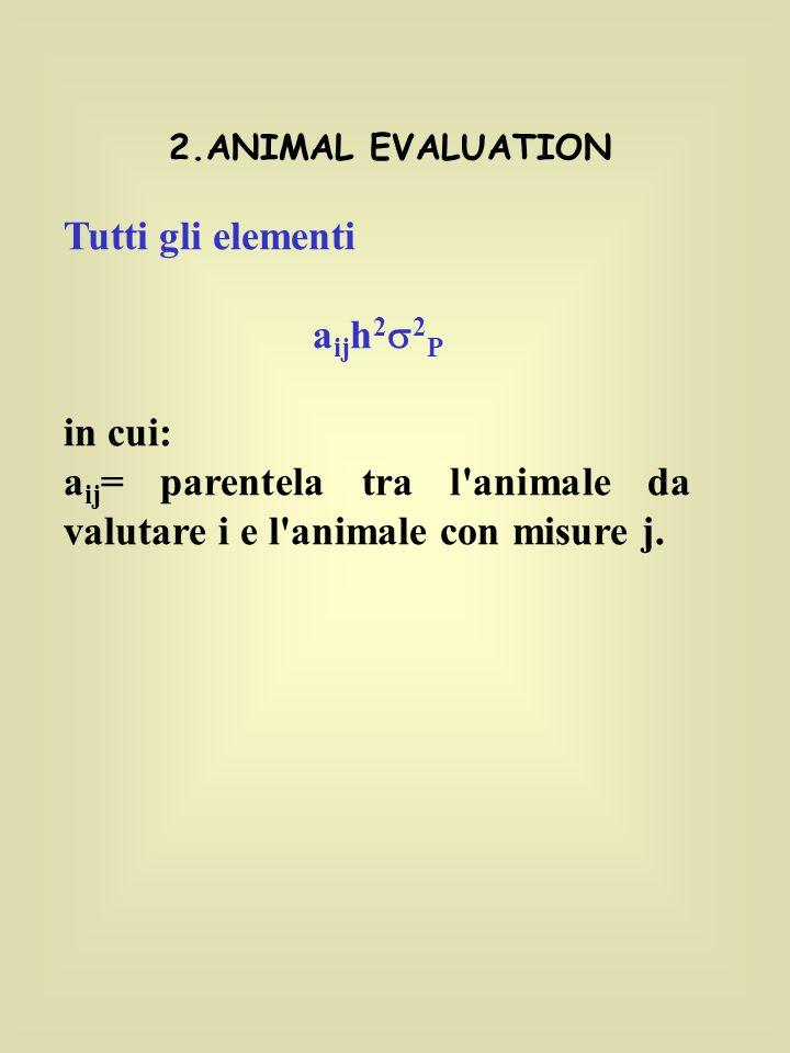 2.ANIMAL EVALUATION Tutti gli elementi a ij h 2 2 P in cui: a ij = parentela tra l animale da valutare i e l animale con misure j.
