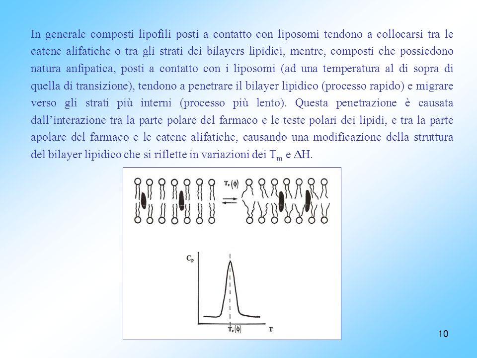 10 In generale composti lipofili posti a contatto con liposomi tendono a collocarsi tra le catene alifatiche o tra gli strati dei bilayers lipidici, mentre, composti che possiedono natura anfipatica, posti a contatto con i liposomi (ad una temperatura al di sopra di quella di transizione), tendono a penetrare il bilayer lipidico (processo rapido) e migrare verso gli strati più interni (processo più lento).