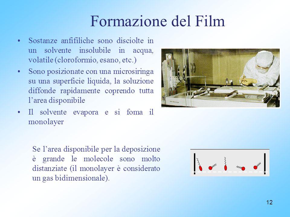 Formazione del Film Sostanze anfifiliche sono disciolte in un solvente insolubile in acqua, volatile (cloroformio, esano, etc.) Sono posizionate con una microsiringa su una superficie liquida, la soluzione diffonde rapidamente coprendo tutta larea disponibile Il solvente evapora e si foma il monolayer 12 Se larea disponibile per la deposizione è grande le molecole sono molto distanziate (il monolayer è considerato un gas bidimensionale).