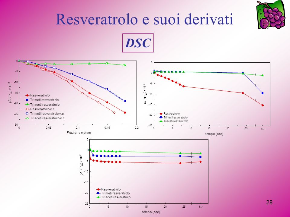 28 Resveratrolo e suoi derivati DSC 00,050,10,150,2 -30 -25 -20 -15 -10 -5 0 Frazione molare ( T/T° m ) x 10 3 Resveratrolo Trimetilresveratrolo Triacetilresveratrolo Resveratrolo v.c.