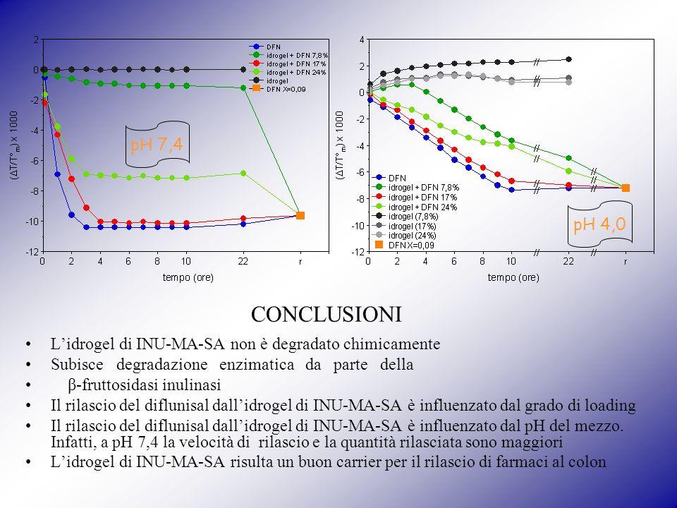pH 7,4 pH 4,0 Lidrogel di INU-MA-SA non è degradato chimicamente Subisce degradazione enzimatica da parte della β-fruttosidasi inulinasi Il rilascio del diflunisal dallidrogel di INU-MA-SA è influenzato dal grado di loading Il rilascio del diflunisal dallidrogel di INU-MA-SA è influenzato dal pH del mezzo.
