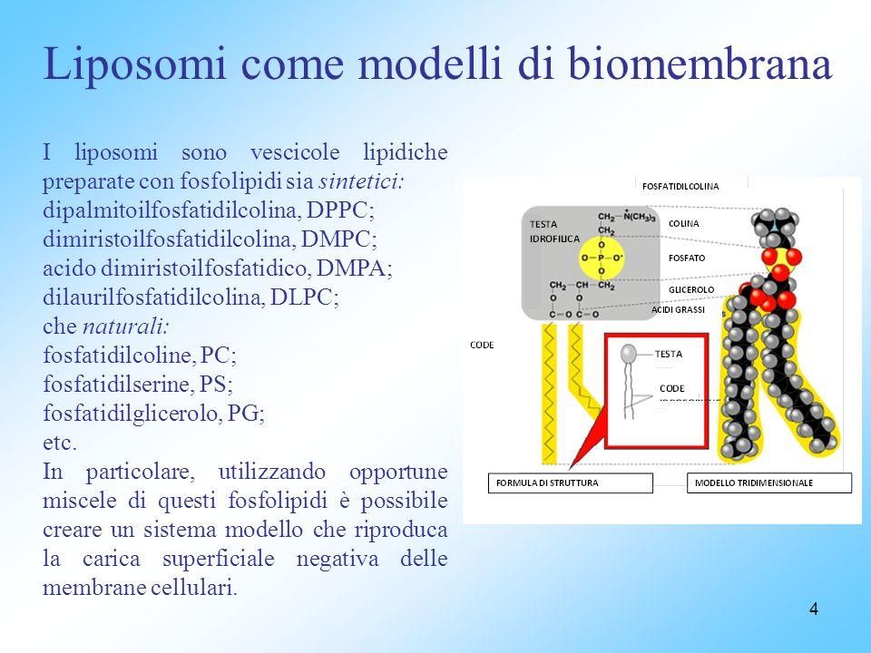 4 Liposomi come modelli di biomembrana I liposomi sono vescicole lipidiche preparate con fosfolipidi sia sintetici: dipalmitoilfosfatidilcolina, DPPC; dimiristoilfosfatidilcolina, DMPC; acido dimiristoilfosfatidico, DMPA; dilaurilfosfatidilcolina, DLPC; che naturali: fosfatidilcoline, PC; fosfatidilserine, PS; fosfatidilglicerolo, PG; etc.