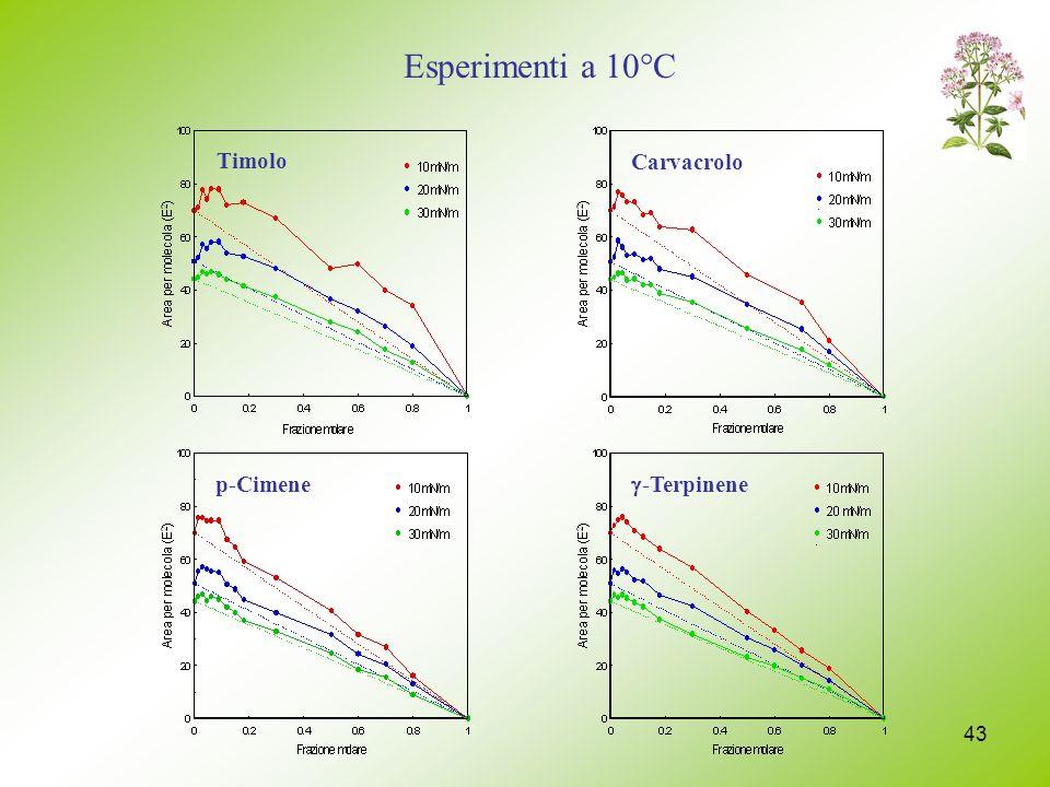 43 Timolo -Terpinene p-CimeneCarvacrolo Esperimenti a 10°C