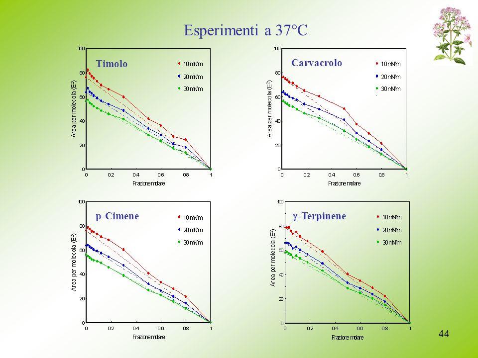 44 p-Cimene -Terpinene Timolo Carvacrolo Esperimenti a 37°C