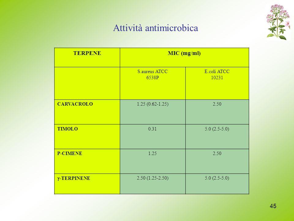 45 TERPENEMIC (mg/ml) S.aureus ATCC 6538P E.coli ATCC 10231 CARVACROLO1.25 (0.62-1.25)2.50 TIMOLO0.315.0 (2.5-5.0) P-CIMENE1.252.50 -TERPINENE 2.50 (1