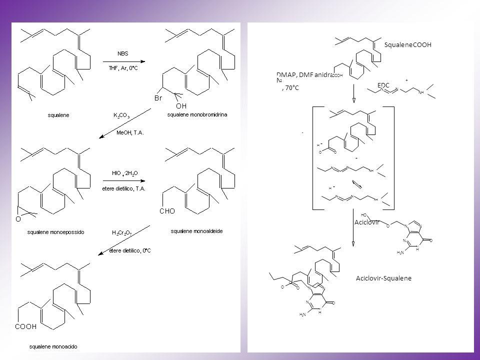 69 N N H N N O NH 2 O SqualeneCOOH DMAP, DMF anidra N 2, 70°C + EDC - + H + H + Aciclovir Aciclovir-Squalene COOH N N NH O O N N NH N N NH N N H N N O NH 2 OH O O O