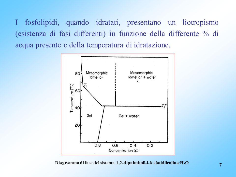 7 I fosfolipidi, quando idratati, presentano un liotropismo (esistenza di fasi differenti) in funzione della differente % di acqua presente e della temperatura di idratazione.