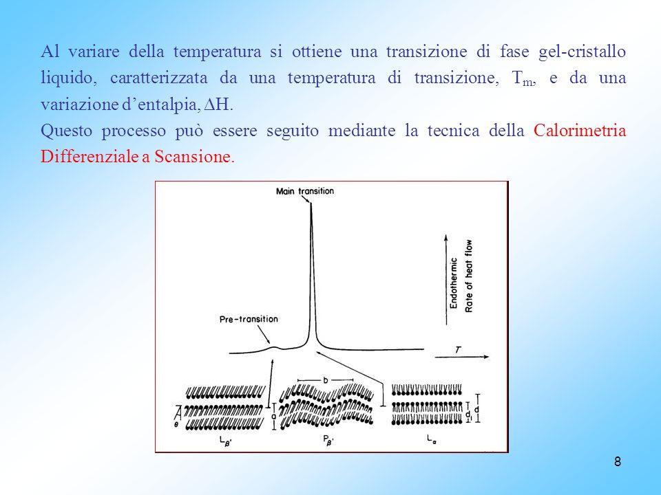 8 Al variare della temperatura si ottiene una transizione di fase gel-cristallo liquido, caratterizzata da una temperatura di transizione, T m, e da una variazione dentalpia, H.