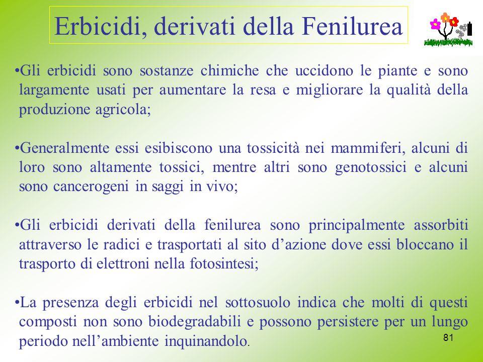 81 Erbicidi, derivati della Fenilurea Gli erbicidi sono sostanze chimiche che uccidono le piante e sono largamente usati per aumentare la resa e migli