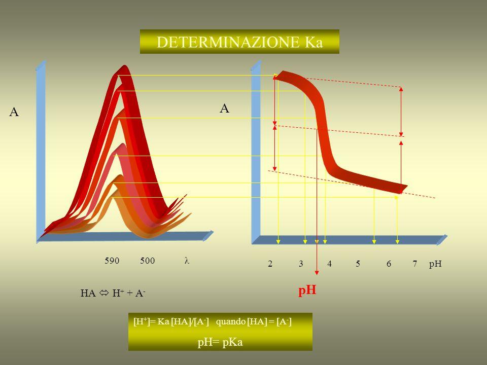 CURVE DI TITOLAZIONE SOSTANZA + TITOLANTE PRODOTTO A 0 mL titolante ε S = ε P = 0 ε T > 0 ε S = ε T = 0 ε P > 0 ε P = ε T = 0 ε S > 0 ε S >ε T >0 ε P