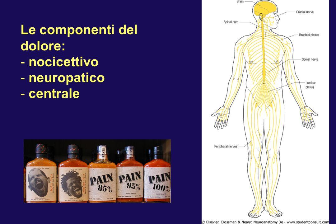 Le componenti del dolore: - nocicettivo - neuropatico - centrale