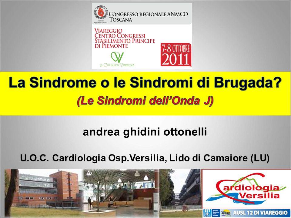 andrea ghidini ottonelli U.O.C. Cardiologia Osp.Versilia, Lido di Camaiore (LU)