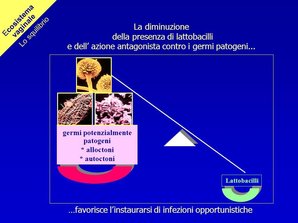 Lattobacilli La diminuzione della presenza di lattobacilli e dell azione antagonista contro i germi patogeni... …favorisce linstaurarsi di infezioni o