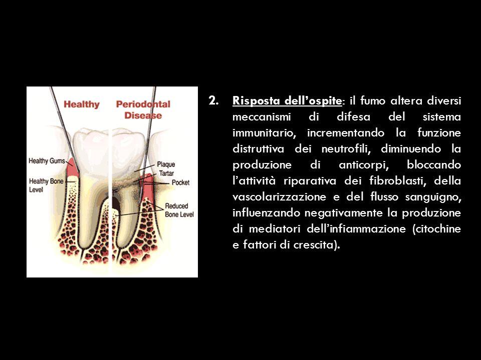 3.Effetti locali della nicotina: la vasocostrizione indotta dalla nicotina riduce il flusso sanguigno gengivale.