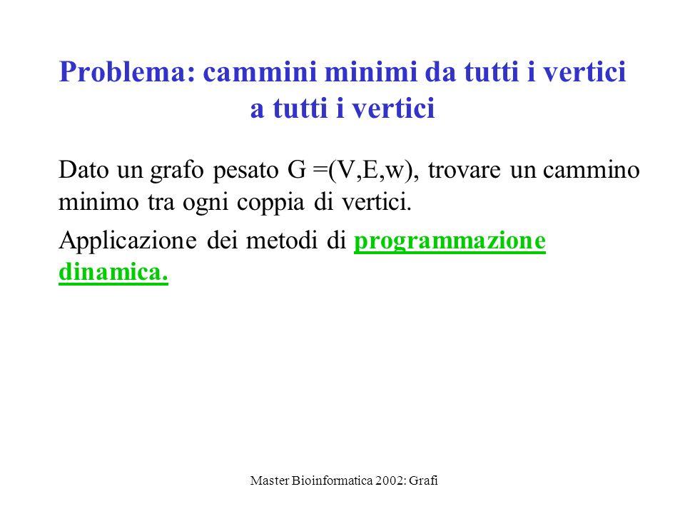 Master Bioinformatica 2002: Grafi Relazione di ricorrenza Definiamo D (k) [i,j] = peso di un cammino minimo da i a j in cui tutti i vertici intermedi sono nellinsieme {1,…k}