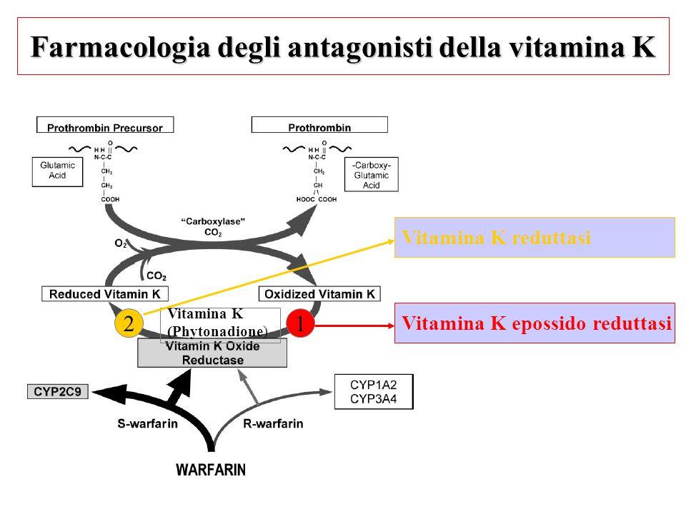 Farmacologia degli antagonisti della vitamina K Vitamina K epossido reduttasi Vitamina K (Phytonadione) 12 Vitamina K reduttasi