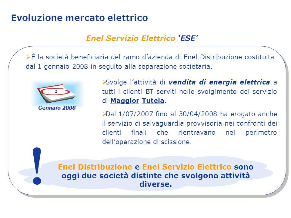 Enel Servizio Elettrico ESE È la società beneficiaria del ramo dazienda di Enel Distribuzione costituita dal 1 gennaio 2008 in seguito alla separazion