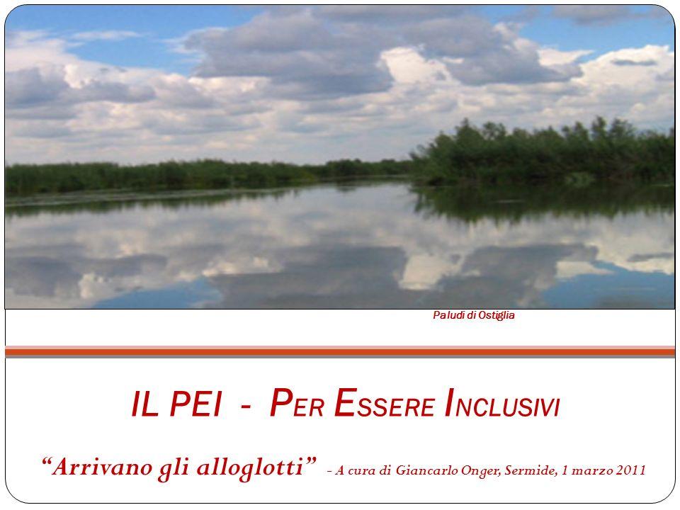 IL PEI - P ER E SSERE I NCLUSIVI Arrivano gli alloglotti - A cura di Giancarlo Onger, Sermide, 1 marzo 2011 Paludi di Ostiglia
