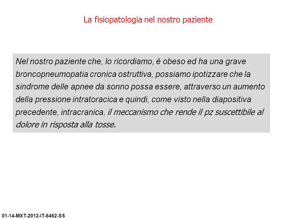 01-14-MXT-2012-IT-6462-SS La fisiopatologia nel nostro paziente Nel nostro paziente che, lo ricordiamo, è obeso ed ha una grave broncopneumopatia cron
