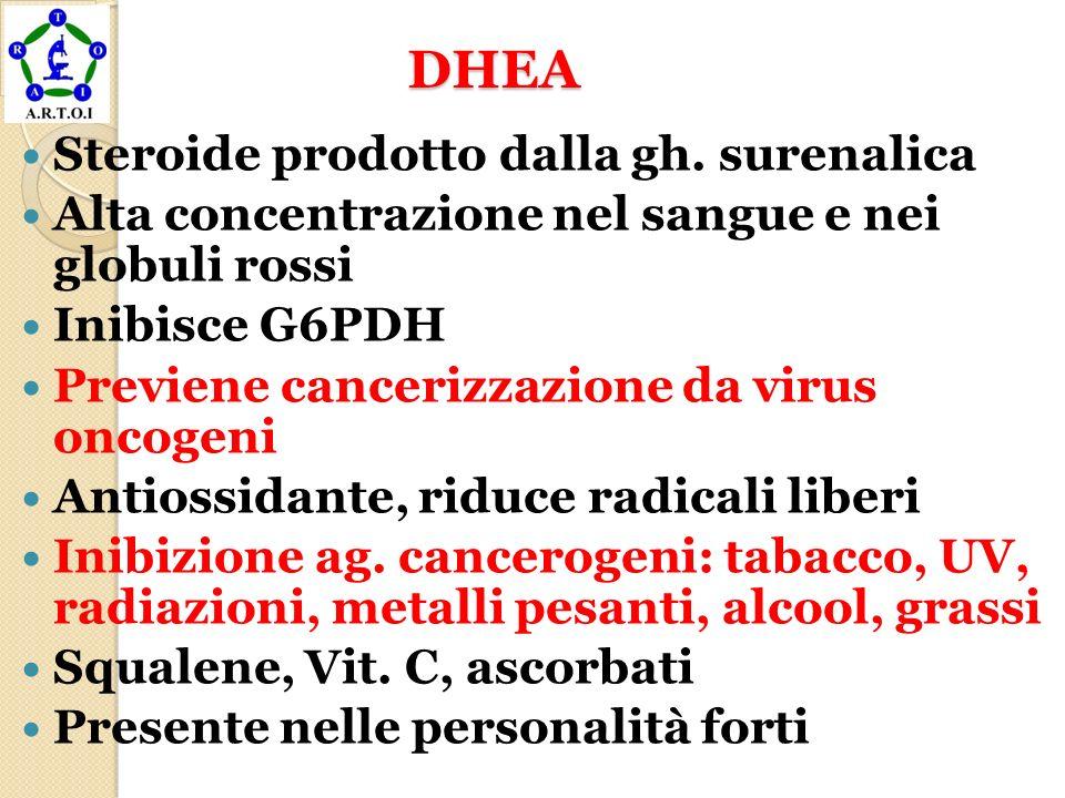 DHEA DHEA Steroide prodotto dalla gh. surenalica Alta concentrazione nel sangue e nei globuli rossi Inibisce G6PDH Previene cancerizzazione da virus o