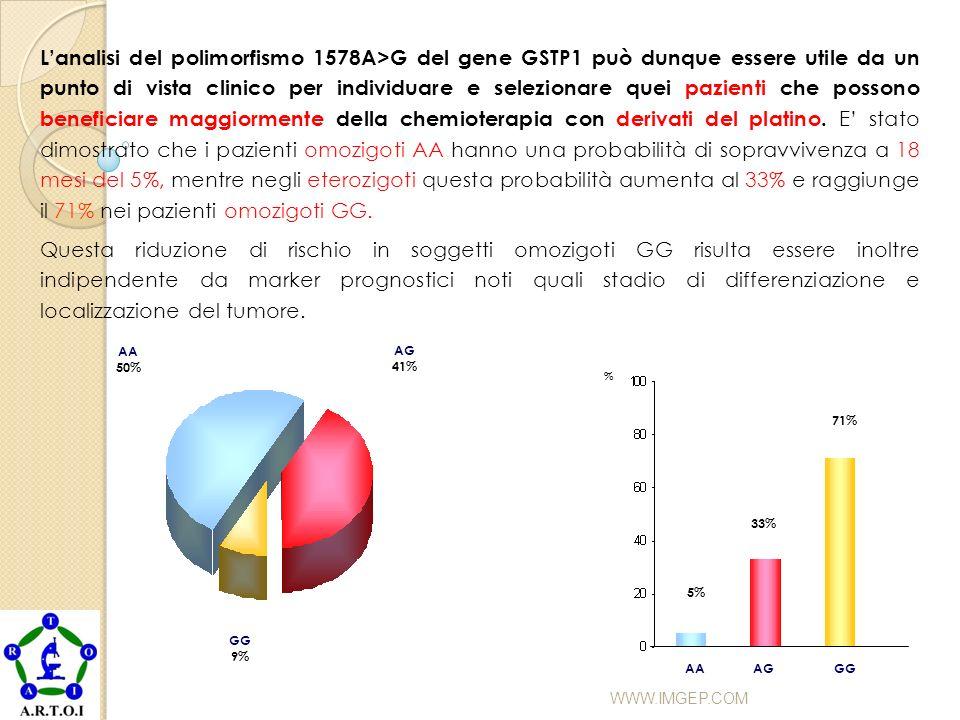 WWW.IMGEP.COM AA 50% AG 41% GG 9% % AAGGAG 5% 33% 71% Lanalisi del polimorfismo 1578A>G del gene GSTP1 può dunque essere utile da un punto di vista cl