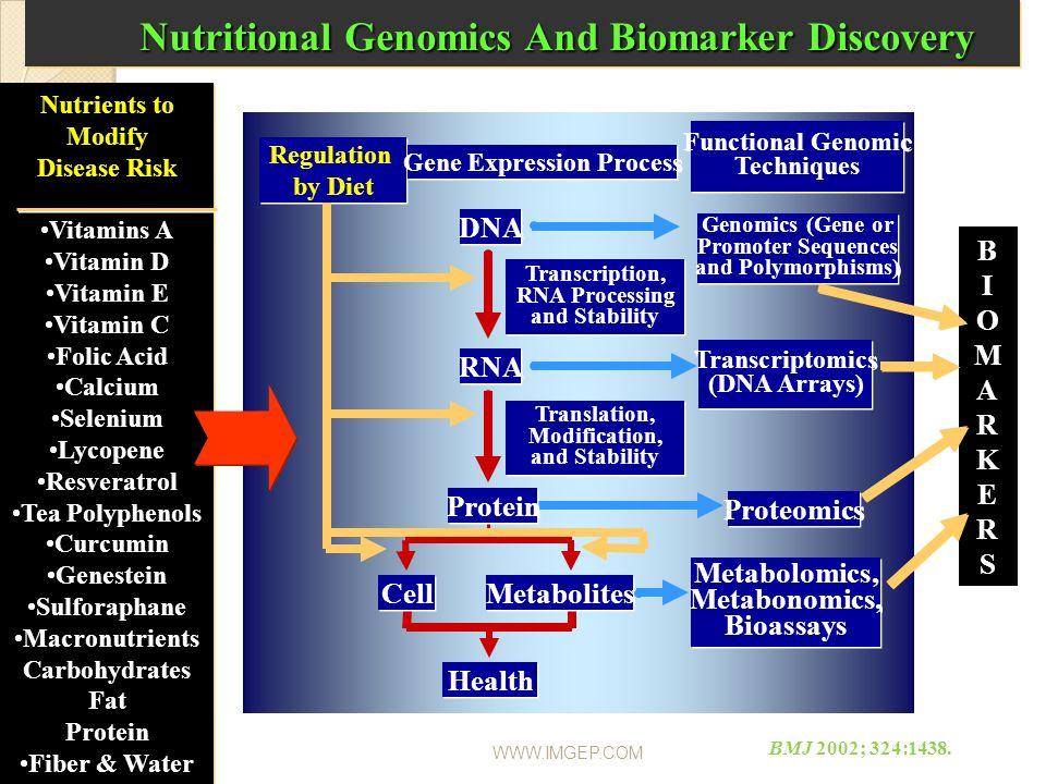 WWW.IMGEP.COM Regulation by Diet Regulation by Diet Gene Expression Process Functional Genomic Techniques Metabolomics, Metabonomics, Bioassays DNA RN
